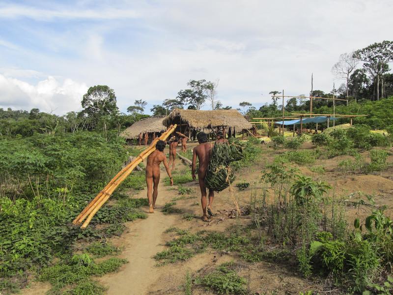 Foto: Zo'é trabalhando na construção de novas casas, Leonardo Viana Braga, 2018