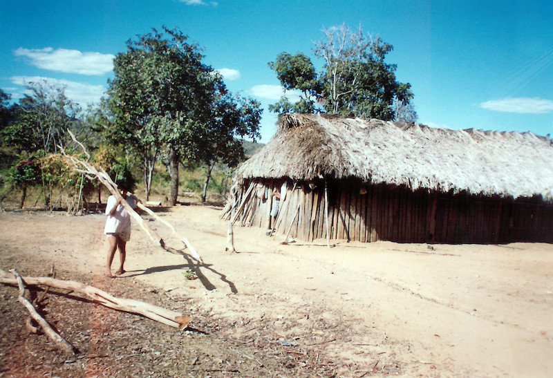 Foto: Tuia carregando lenha para a oca, T.I. Avá-Canoeiro, 2003. Cristhian Teófilo da Silva, 2003.