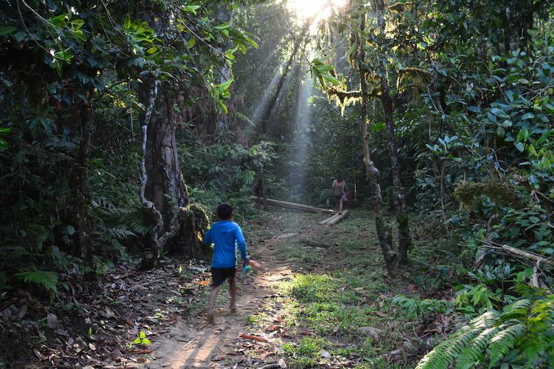 Criança acompanha sua mãe no caminho da roça até a comunidade. Fuduuwaadunnha, TI Yanomami, Roraima. Majoí Gongora, 2018.